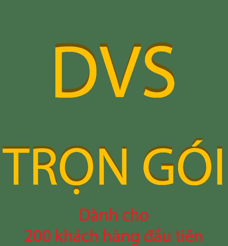DVS-TRỌN GÓI