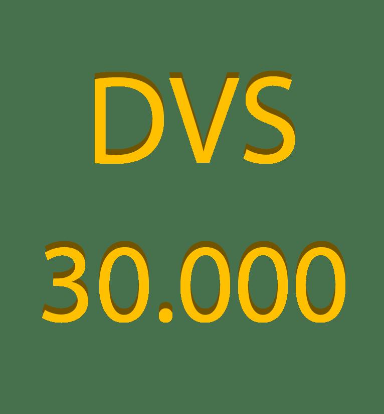 DVS – 30.000